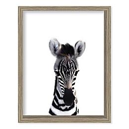 Boston Warehouse® Baby Zebra 12-Inch x 15-Inch Framed Wall Art