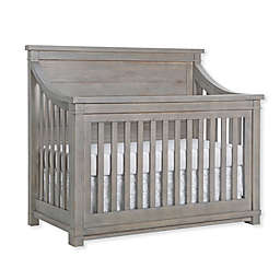 Baby Appleseed® Rowan 4-in-1 Convertible Crib in Rainwash