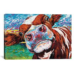 iCanvas Curious Cow I Canvas Wall Art