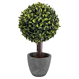 Bee & Willow™ Home Faux Boxwood Topiary in Cement Pot