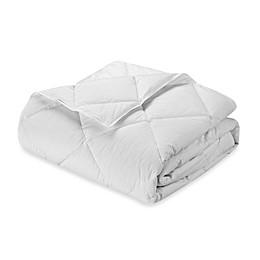Robin Wilson Home Hypoallergenic Lightweight Warmth Down Alternative Comforter