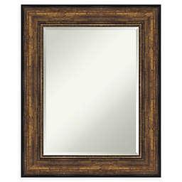 Amanti Art Ballroom Bathroom Vanity Mirror in Bronze