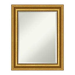 Amanti Art Parlor 24-Inch x 30-Inch Framed Bathroom Vanity Mirror in Gold