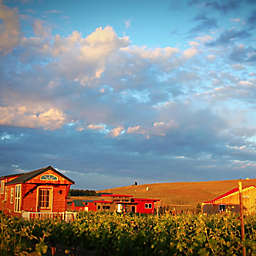 Tiny House Glamping Getaway Winery Tour and Barrel Tasting Prosser WA by Spur Experiences®
