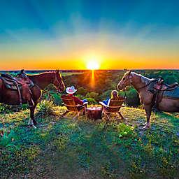 Sunset Horseback Ride by VEBO®