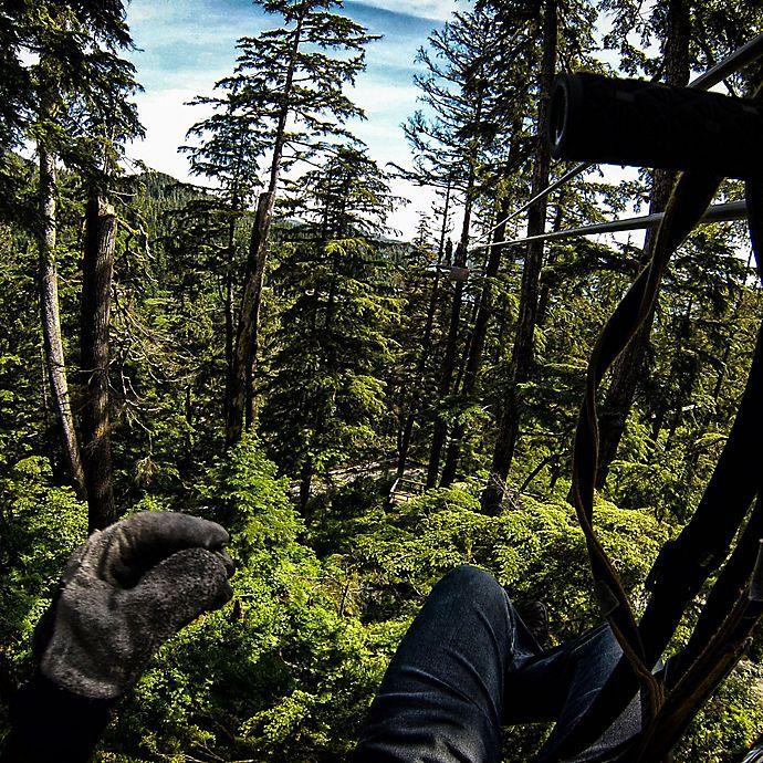 Alternate image 1 for Talkeetna Zipline Canopy Adventure  by Spur Experiences®