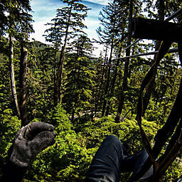 Talkeetna Zipline Canopy Adventure  by Spur Experiences®