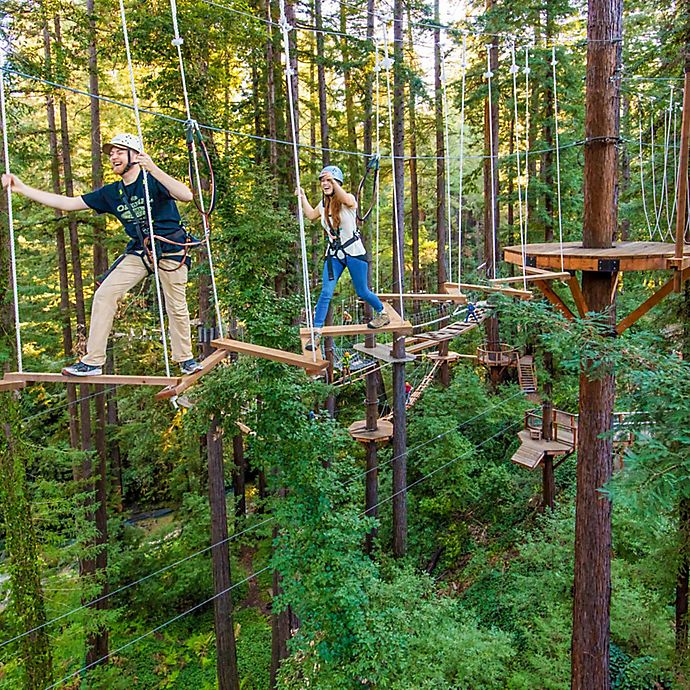 Alternate image 1 for Sequoia Aerial Adventure in Mount Hermon, CA by Spur Experiences®