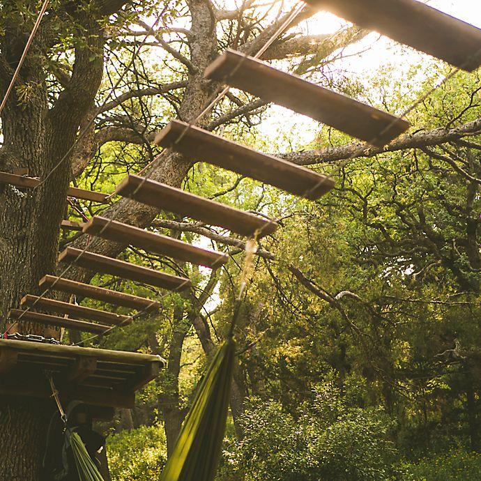 Alternate image 1 for Seward, Alaska Temperate Rainforest Canopy Adventure by Spur Experiences®