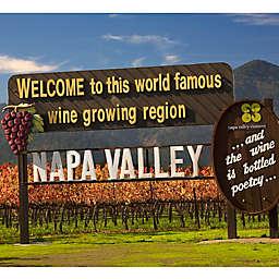 Wine Tasting Tour in Napa Valley by VEBO®