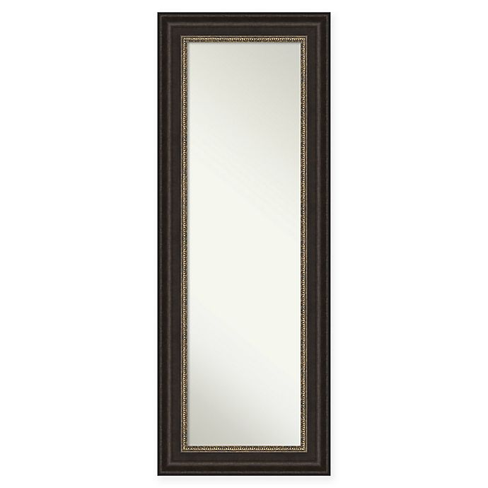 Alternate image 1 for Amanti Art Impact 20-Inch x 54-Inch Framed On the Door Mirror in Bronze