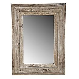 A&B Home Colfax 29.7-Inch x 39.4-Inch Rectangular Mirror in Antique