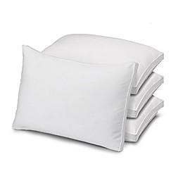 Ella Jayne Microfiber Firm Bed Pillows (Set of 4)
