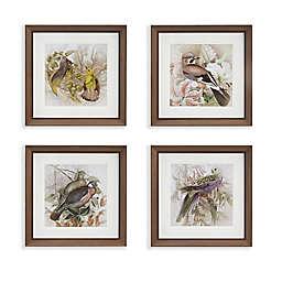 Martha Stewart Pretty Bird Double Mat Framed 18-Inch Square Wall Art (Set of 4)