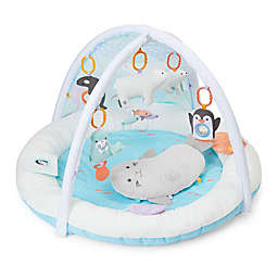 carter's® My Arctic Friends Play Gym