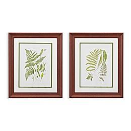 Martha Stewart Royal Ferns Double Mat Framed 19-Inch x 23-Inch Wall Art (Set of 2)