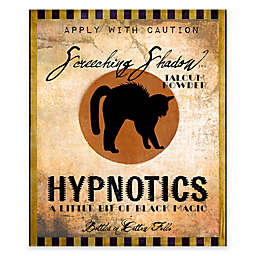 Courtside Market Hypnotics 20-Inch x 24-Inch Gallery Art Decal