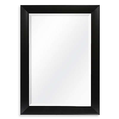 Decorative 42.25-Inch x 30.25-Inch Wall Mirror in Black
