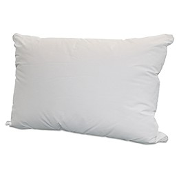 Springs Home Firm Cotton Bed Pillow