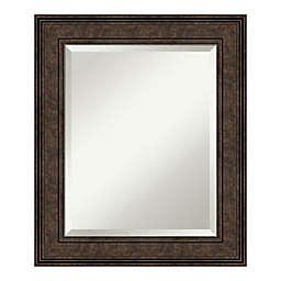 Amanti Art Ridge 22-Inch x 26-Inch Framed Bathroom Vanity Mirror in Bronze
