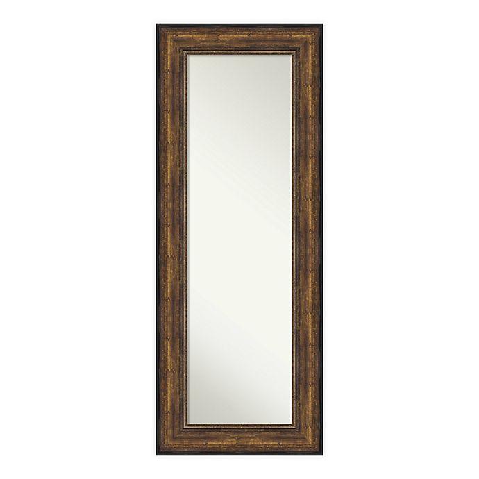 Alternate image 1 for Amanti Art Ballroom 22-Inch x 56-Inch Framed On the Door Mirror in Bronze