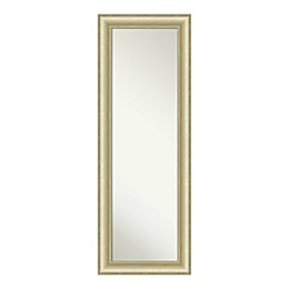 Amanti Art Textured Light 19-Inch x 53-Inch Framed On the Door Mirror in Gold