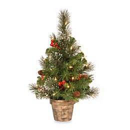 National Tree Company Crestwood Spruce 2-Foot Pre-Lit Tree with LED Lights