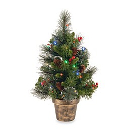 National Tree Company Crestwood Spruce 2-Foot Pre-Lit Tree with Multicolor Lights