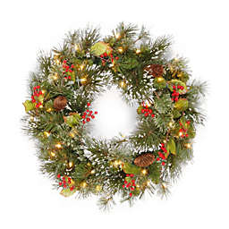 National Tree 24-Inch Wintry Pine Pre-Lit Wreath with White Lights