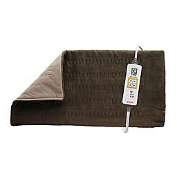 Sunbeam® Xpress Heat King Heating Pad in Brown