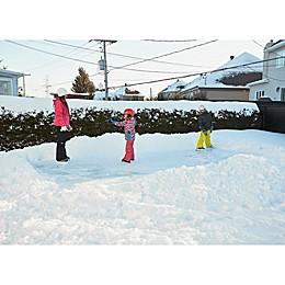 SimpleRink™ Gazebo Penguin Backyard Ice Skating Rink