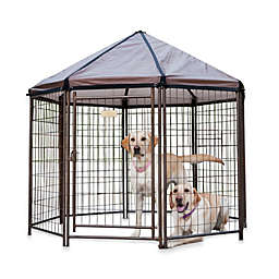 Advantek 5-Foot Pet Gazebo