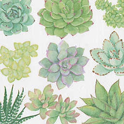 Caspari 20-Count 3-Ply Succulents Paper Cocktail Napkins