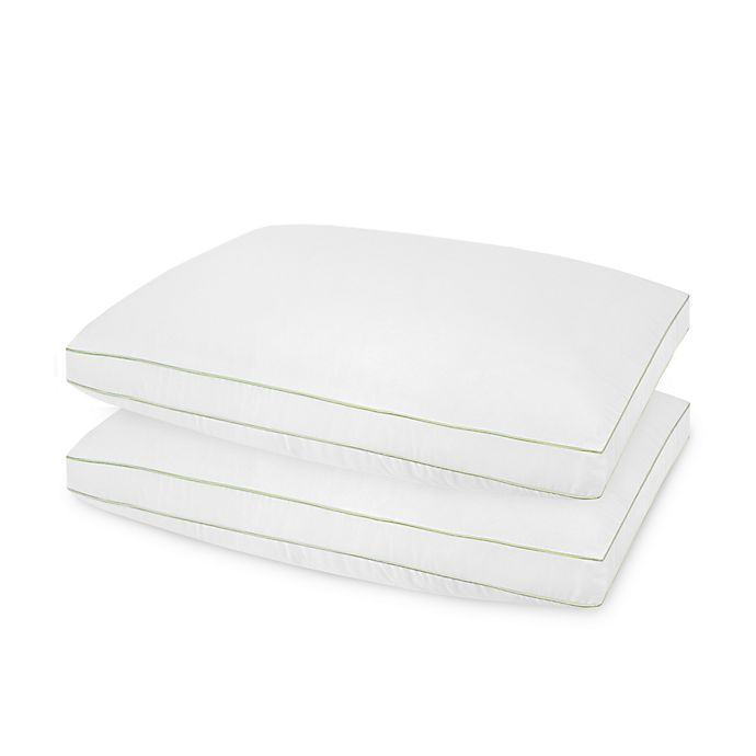 Alternate image 1 for SofLOFT 2-Pack Pillows