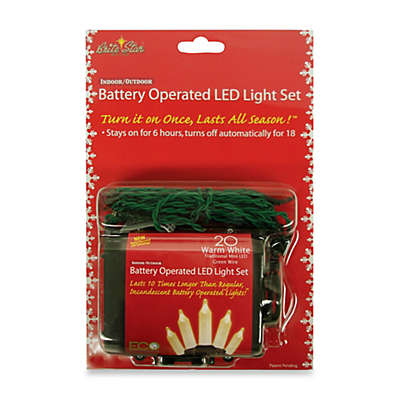 Brite Star Battery Operated 20 Warm White Mini LED Light Set with Timer