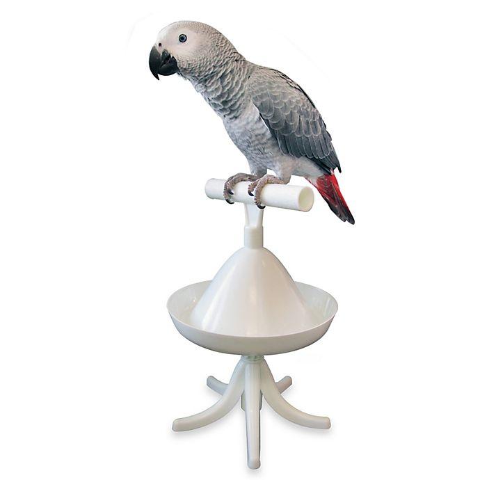 Alternate image 1 for The Percher Portable Training Bird Perch