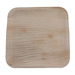 Jodhpüri™ 25-Count 10-Inch Square Areca Leaf Plates