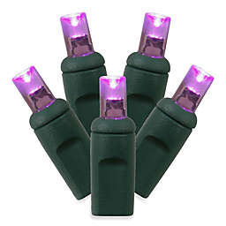 Vickerman 100 LED Light Wide Wire Angle Set in Purple