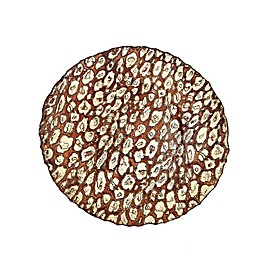Classic Touch Vintage Gold Charger Plates (Set of 4)