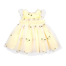 Baby Biscotti Embroidered Floral Dress in Yellow