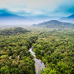 Keteka Colombia: 4-Day Amazon Jungle Trek by Spur Experiences®