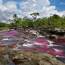 3-Day Rainbow River Tour River of Five Colors, Colombia by Spur Experiences®