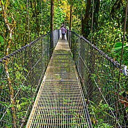 La Fortuna Waterfalls, Hanging Bridges, Arenal Volcano Tour n Costa Rica by Spur Experiences®