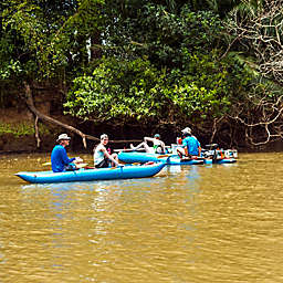 Kayaking In The Tamarindo Estuary by Spur Experiences® (Guanacaste, Costa Rica)