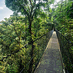 Costa Rica Rainforest Aerial Tram and Canopy Tour by Spur Experiences®