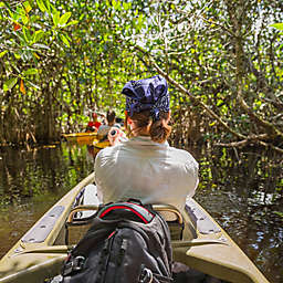 Mangrove Kayaking in the Yucatan by Spur Experiences®