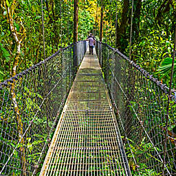 Costa Rica Tortuguero Panoramic Tour by Spur Experiences®