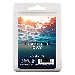 AmbiEscents™ Sea's the Day 6-Pack Scented Wax Cubes