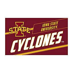 "Iowa State University 16"" x 28"" Coir Punch Door Mat"