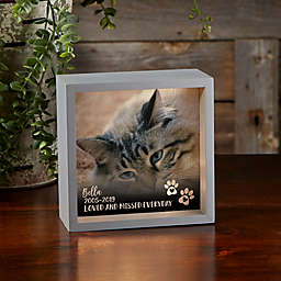 Pet Photo Memorial Personalized 6-Inch Square LED Shadow Box in Grey